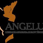 Angelus 2015 - lista książek