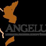 Angelus 2016 - lista książek